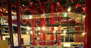 The bar at Mellow Mushroom, Toms River. (Photo: Mellow Mushroom)