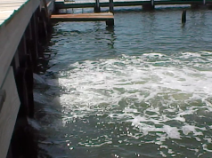 Water flows into Barnegat Bay from a pump at Lyman Avenue in Mantoloking. (Photo: Daniel Nee)