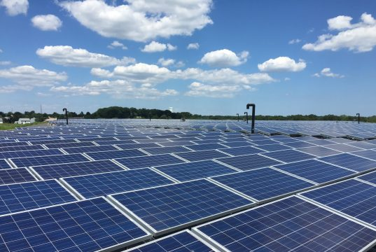 Solar panels at the former French's Landfill site. (Photo: Daniel Nee)