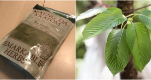 Kratom packaged for retail sale and kratom leaves in the wild. (Photos: Daniel Nee / NIH)