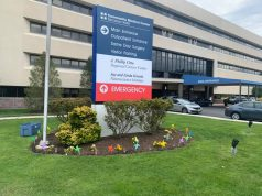 Colorful pinwheels and flags displayed at Ocean Medical Center and Community Medical Center, organized by local resident Frank Peppi. (Photo: Frank Peppi)
