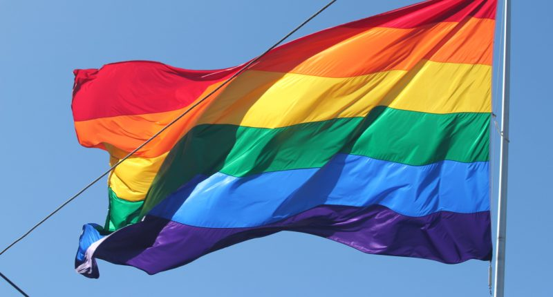 Rainbow pride flag. (Credit: Quinn Dombrowski/ Flickr)